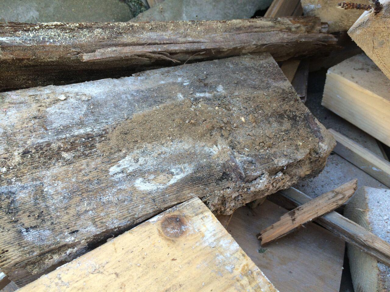pr architectenburo - aantasting houten vloer 19e eeuws monument Bos en Vaart